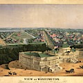View Of Washington by Flavia Westerwelle