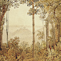 View Overlooking Rio De Janeiro From The Tijuca Forest  by Thomas Ender