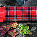 Vintage Plaid Thermos by Dale Powell