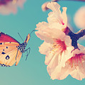 Vintage Spring Image With Butterfly And by Protasov An