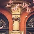 Vintage Spring In Back Bay Boston by Joann Vitali