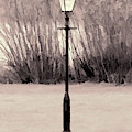 Vintage Street Lamp by Scott Lyons