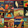 Vintage Western Theme Fruit And Vegetable Crate Labels by Peggy Collins