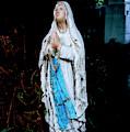 Virgin Mary by Shaun Higson