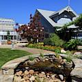 Visitor Center At The North Carolina Arboretum by Jill Lang