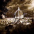 Viste Di Firenze  by Micki Findlay