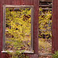 Wabi-sabi Autumn by Leland D Howard