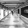 Waiting At Penn Station by Sharon Popek