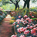 Walking By The Roses by David Lloyd Glover