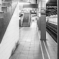 Wall Street Station Black And White by Sharon Popek