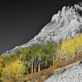 Waning Gibbous Moon Autumn Monarch Pass Bwsc by James BO Insogna
