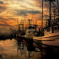 Warm Morning On The Bay by Bill Posner