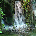 Water Feature  by Michael MacGregor