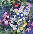 Watercolor - Alpine Wildflower Design by Cascade Colors