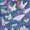 Watercolor - Butterfly Design by Cascade Colors