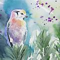 Watercolor - Gray Jay Solitude by Cascade Colors