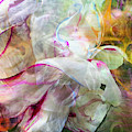 Watercolor Peony by Cindy Greenstein