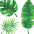 Watercolor Tropical Leaves by Saemilee