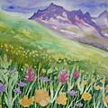 Watercolor - Yankee Boy Basin Wildflower Landscape by Lynn Cyrus