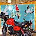 Watkin Park Bird Mural And Motorcycle by Paul Rebmann