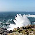 Wave Like Quartz by Terri Waters