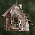 Weathered Bird House by Dale Kincaid