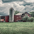 Weathered Worn And Standing Strong by Judy Hall-Folde