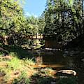 Webber Creek Bridge by Blake Wesley