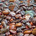 Wet Beach Stones by Susan Rydberg