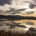 Wetlands At Dusk by Jason Bohl