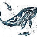 Whale In Blue by ZeichenbloQ