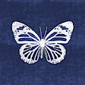 White And Indigo Butterfly 3- Art By Linda Woods by Linda Woods
