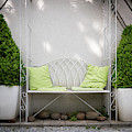 White Bench Made Of Iron With Two Green Bushes On The Side by Stefan Rotter