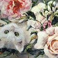 White Cat In Apricot Roses by Ryn Shell
