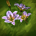 White Lillies On Green #i4 by Leif Sohlman