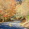 White Mountain Drive by Scott Kemper