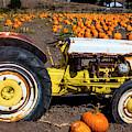 White Tractor In Pumpkin Field by Garry Gay
