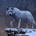 White Wolf In A Blizzard by Daniel Eskridge