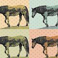 Wild Pop Art by Mary Hone