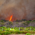 Wildfire In Maui by Anthony Jones
