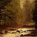 Williams River At Sundown by Thomas R Fletcher