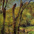 Willows 1885 by Gauguin Paul