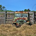 Willys Rusting At The Ranch by Don Columbus