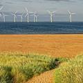 Wind Farm Off Shore by Martyn Arnold