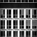 Windows by Borja Robles