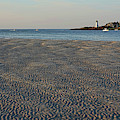 Wingaersheek Beach Sand Patterns And Shadows Gloucester Ma Annisquam Lighthouse by Toby McGuire