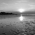 Wingaersheek Beach Sunset Gloucester Ma Black And White by Toby McGuire