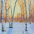 Winter Birches-cardinal Left by Monika Shepherdson