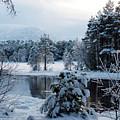 Winter Calm - Loch Morlich by Phil Banks