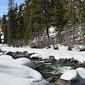Winter Creek by Marie Leslie